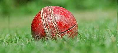 cricket ball knocked out of the park